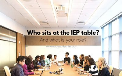 Who sits at the IEP table? And what is your role?