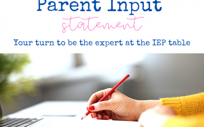 You are the EXPERT at the IEP Table, Parent Input Statements